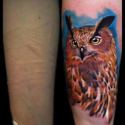 tatuaje realista búho cover piel
