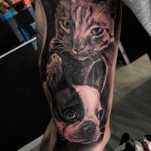 cat-and-dog-Fran-Blanco